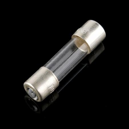Fuse 5mm 250V 200mA